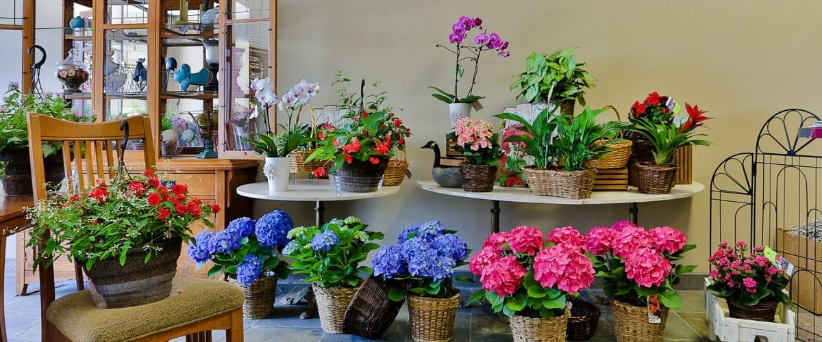 Boise Flower Companyjohnson Floral Decor Your Idaho Florist