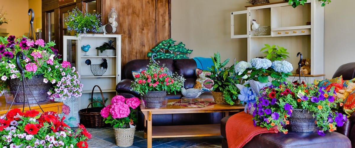 wsi-imageoptim-Johnson-Floral
